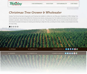 New Holiday Tree Farms Website
